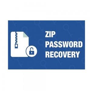 Any ZIP Password Recovery v9.9.8
